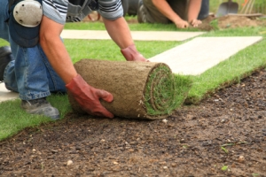 Services include Garden landscaping garden surveys garden design